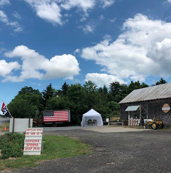 treiber farms Farmstand